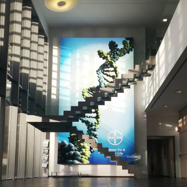 Large format print frames Bayer, Kader, Doek, Frame, omlijsting, raamwerk X-Treme Creations